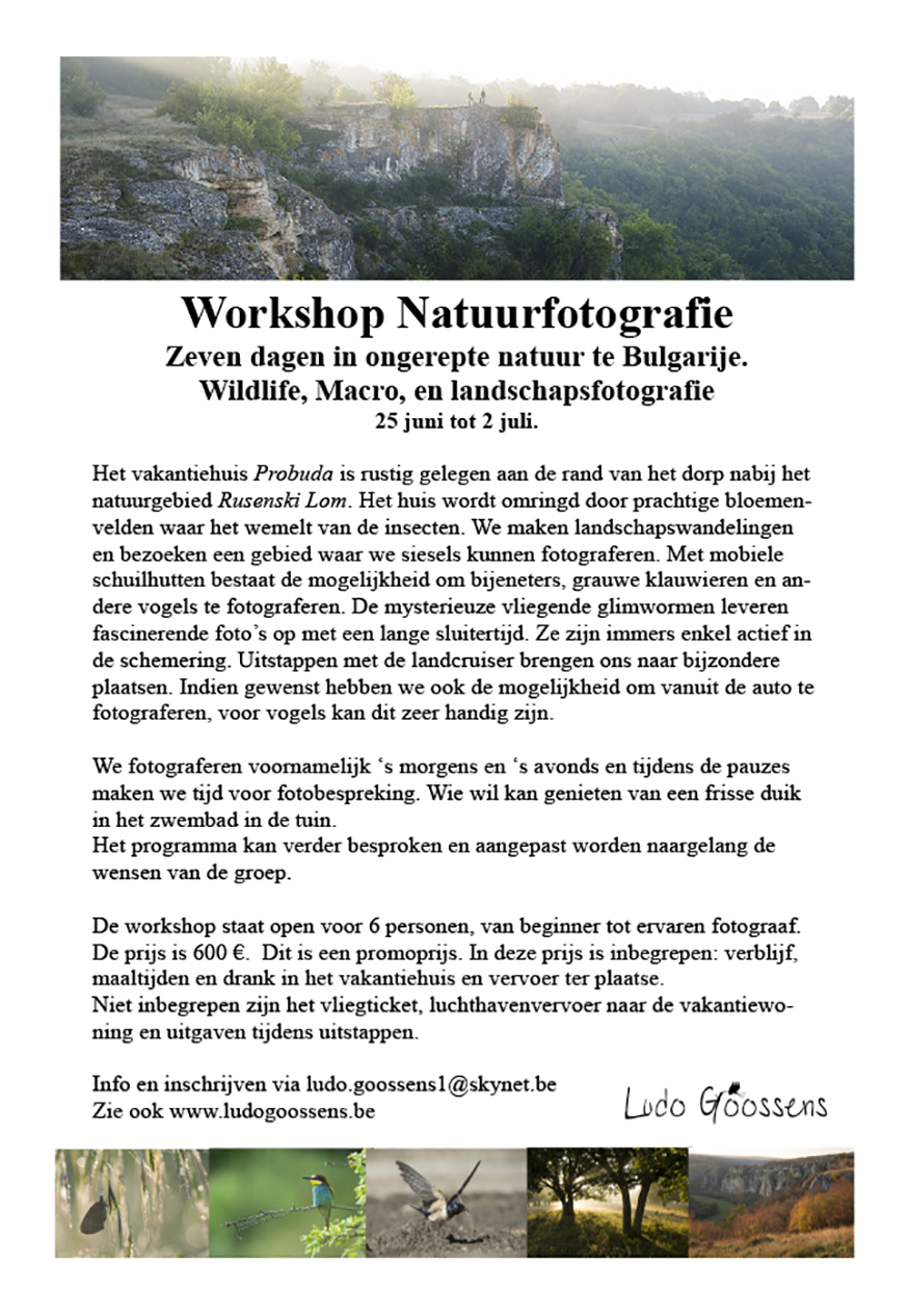 Publicatie2 workshop bulgarije 875 def
